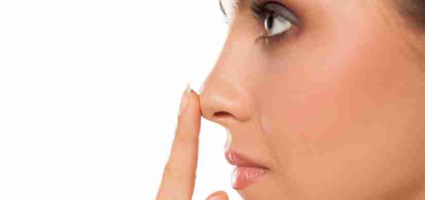Características de la punta nasal